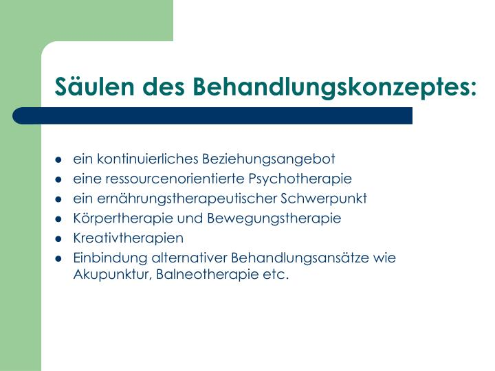 Säulen des Behandlungskonzeptes: