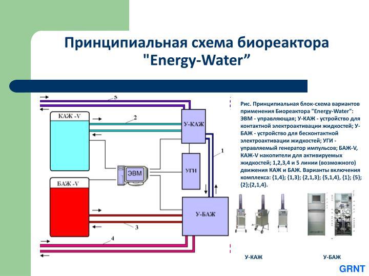 """Принципиальная схема биореактора """"Energy-Water"""