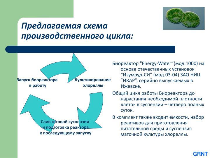 Предлагаемая схема производственного цикла: