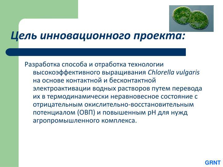Цель инновационного проекта: