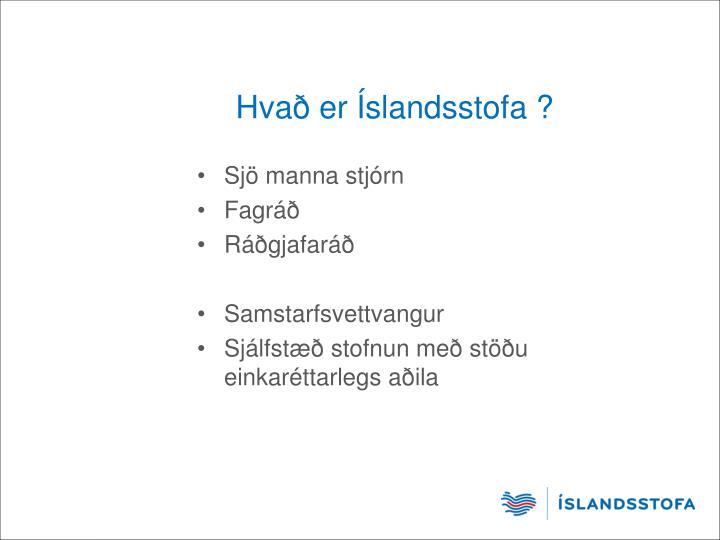 Hvað er Íslandsstofa ?