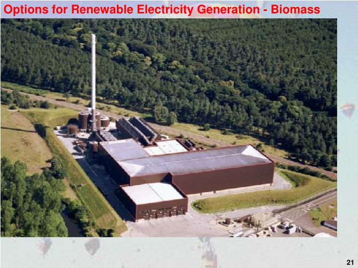 Options for Renewable Electricity Generation - Biomass