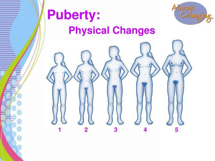 Puberty:
