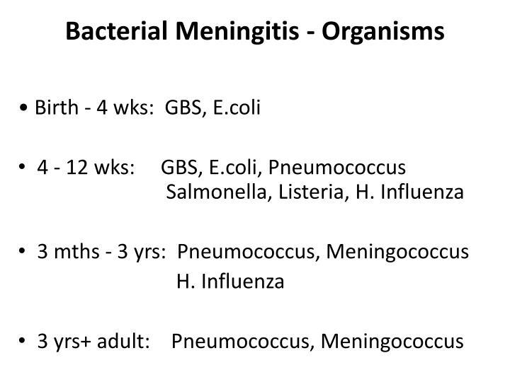 Bacterial Meningitis - Organisms