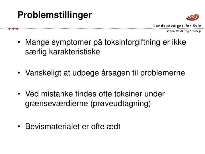 Problemstillinger