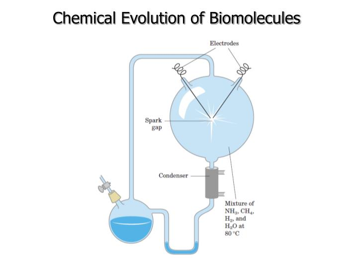 Chemical Evolution of Biomolecules