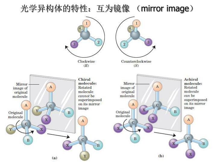 光学异构体的特性:互为镜像 (