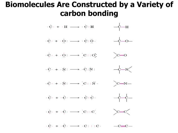Biomolecules Are