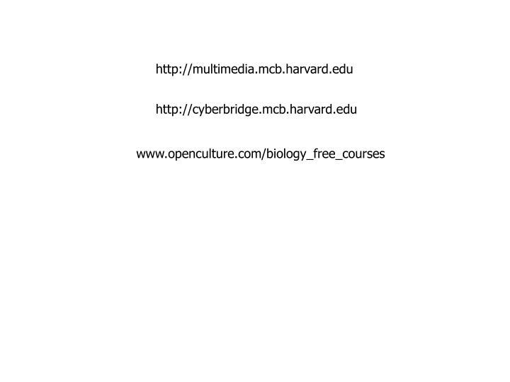 http://multimedia.mcb.harvard.edu