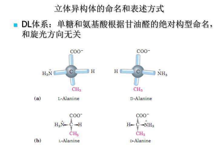 立体异构体的命名和表述方式