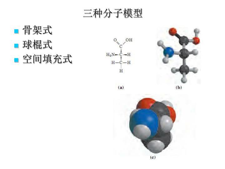 三种分子模型