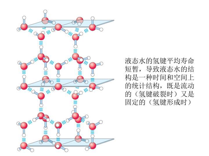 液态水的氢键平均寿命短暂,导致液态水的结构是一种时间和空间上的统计结构,既是流动的(氢键破裂时)又是固定的(氢键形成时)
