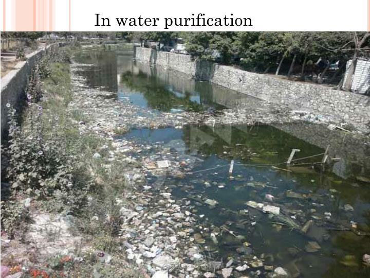 In water purification