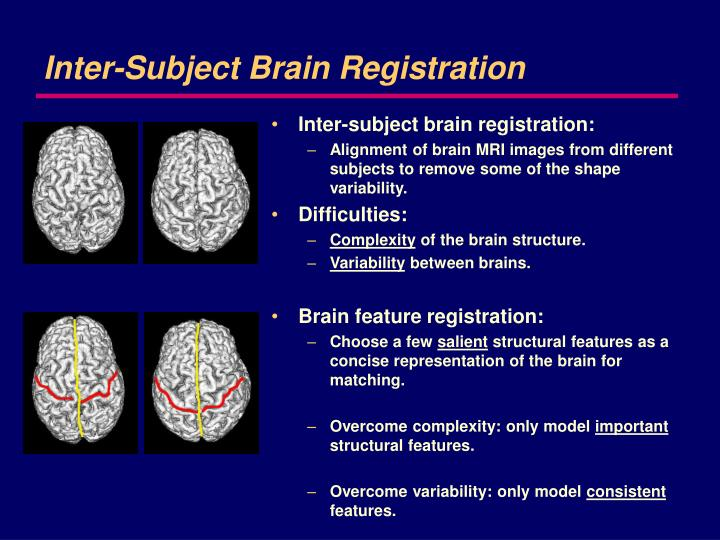 Inter-Subject Brain Registration