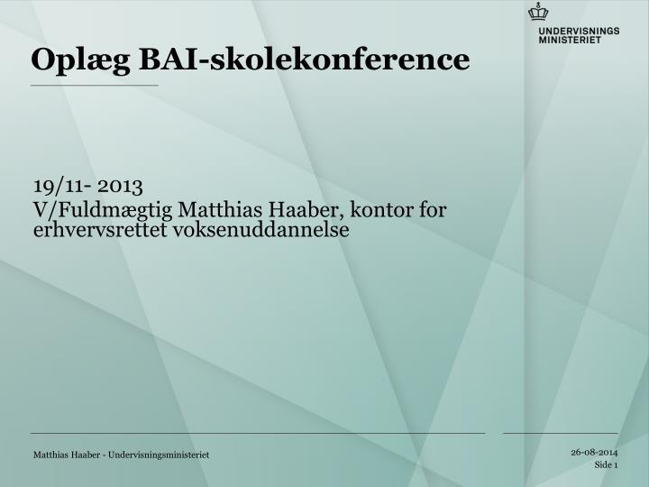 Oplæg BAI-skolekonference