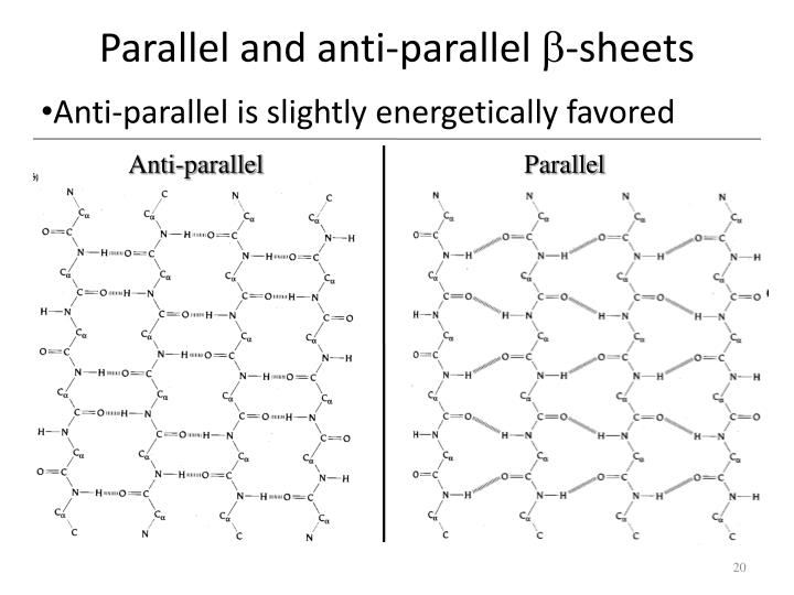 Parallel and anti-parallel