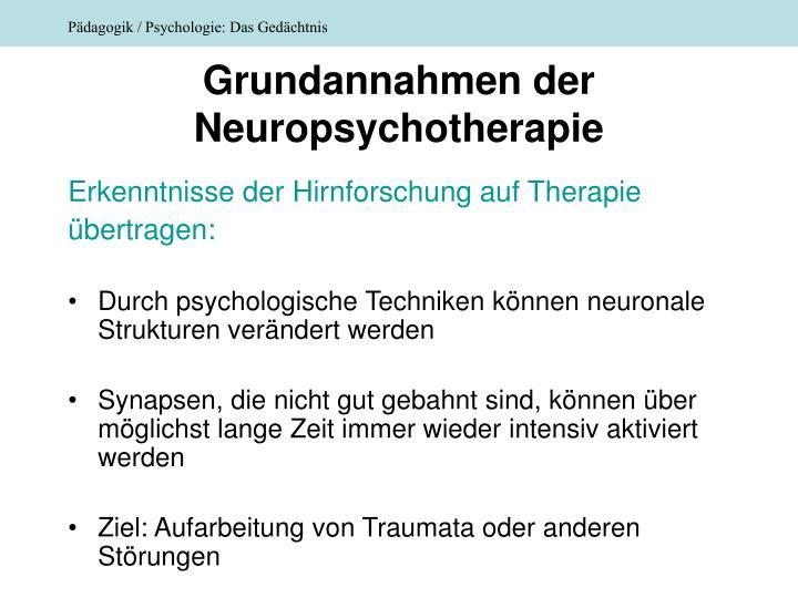 Grundannahmen der Neuropsychotherapie