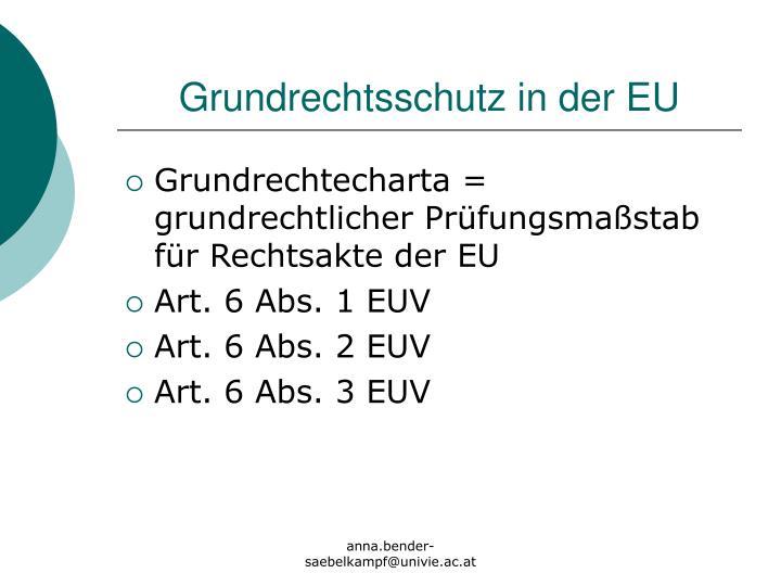 Grundrechtsschutz in der EU