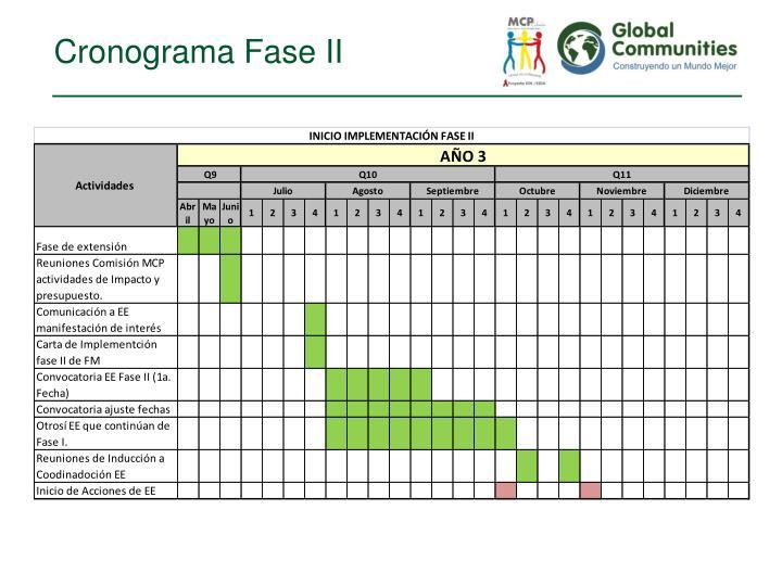 Cronograma Fase II