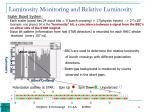 luminosity monitoring and relative luminosity
