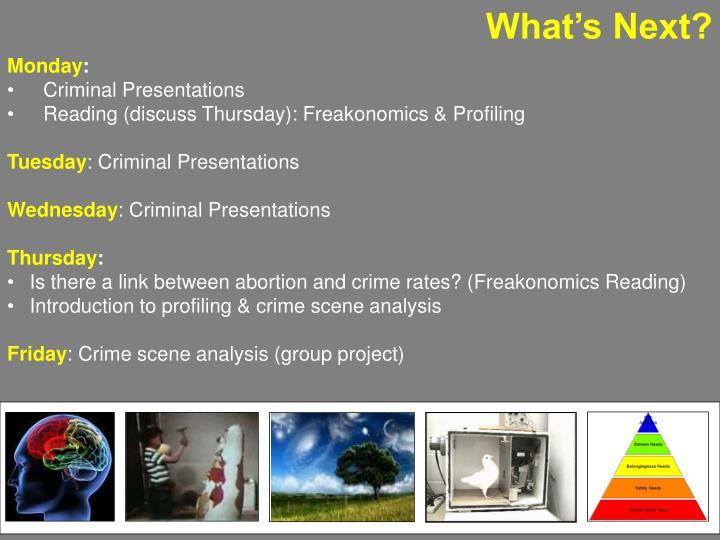 freakonomics crime and abortion