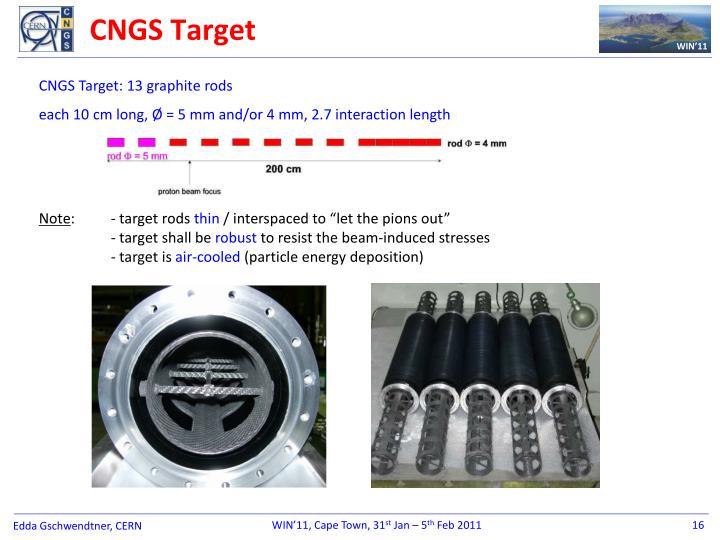 CNGS Target
