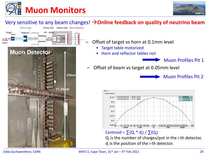 Muon Monitors