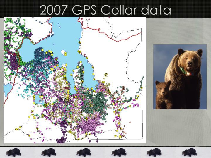 2007 GPS Collar data