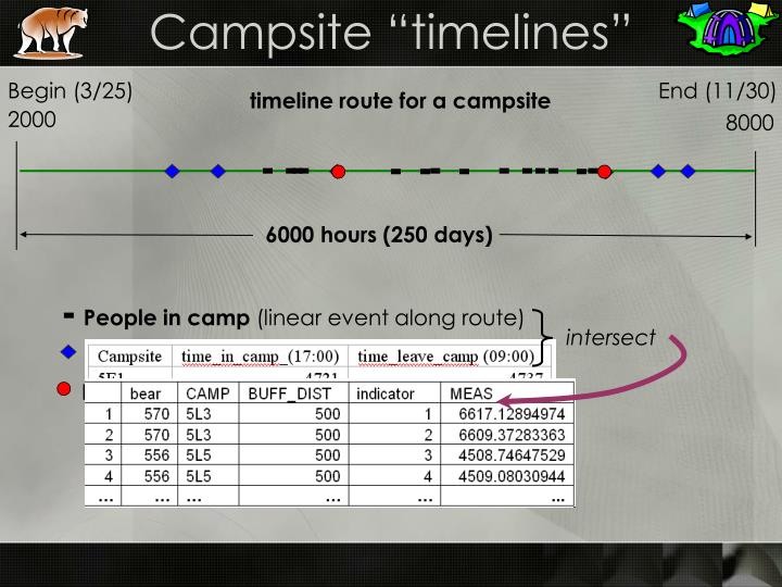 "Campsite ""timelines"""