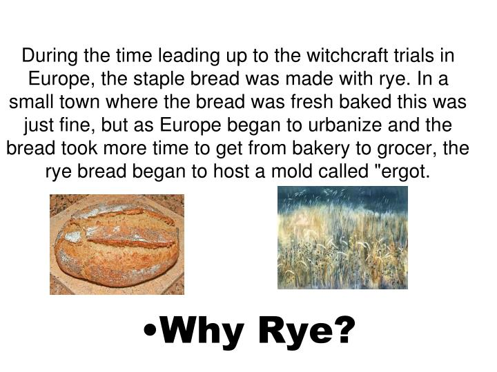 "During the time leading up to the witchcraft trials in Europe, the staple bread was made with rye. In a small town where the bread was fresh baked this was just fine, but as Europe began to urbanize and the bread took more time to get from bakery to grocer, the rye bread began to host a mold called ""ergot."