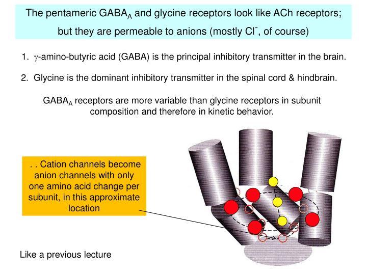 The pentameric GABA