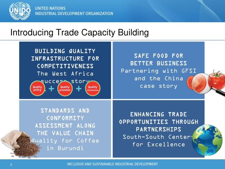Introducing Trade Capacity Building