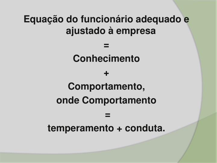 Equação do funcionário adequado e ajustado à empresa