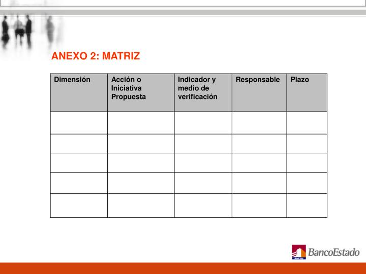 ANEXO 2: MATRIZ