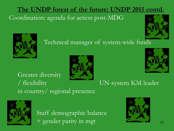 The UNDP forest of the future: UNDP 2015 contd.