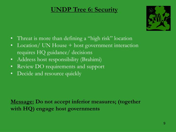 UNDP Tree 6: Security