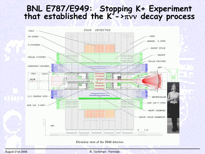 BNL E787/E949:  Stopping K+ Experiment that established the K