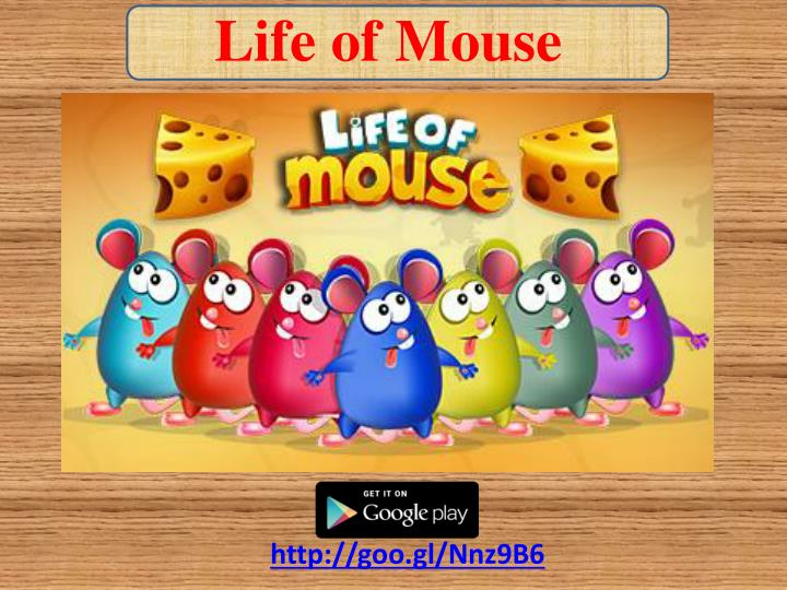 Life of Mouse