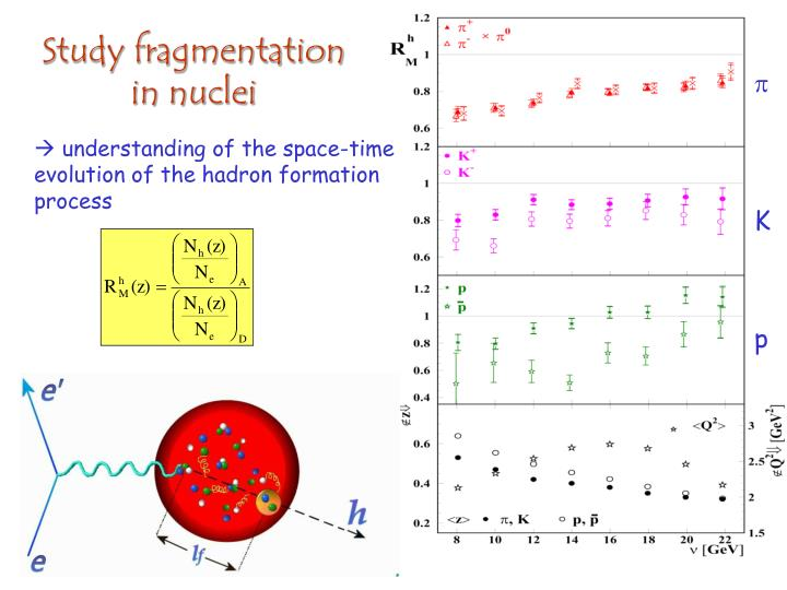 Study fragmentation in nuclei