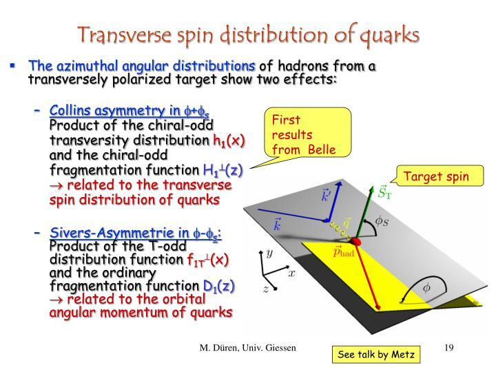 Transverse spin distribution of quarks
