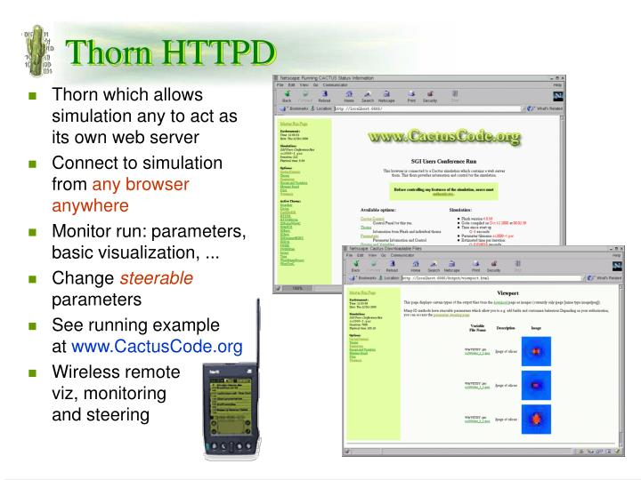 Thorn which allows simulation any to act as its own web server