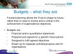 budgets what they are