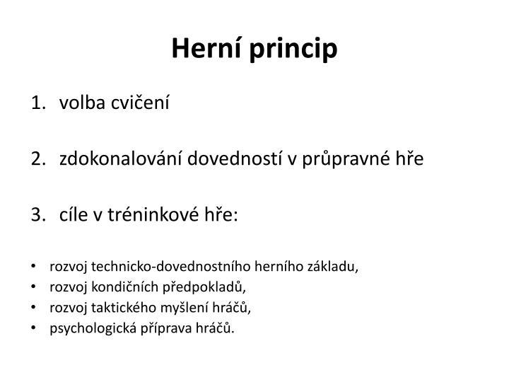 Herní princip