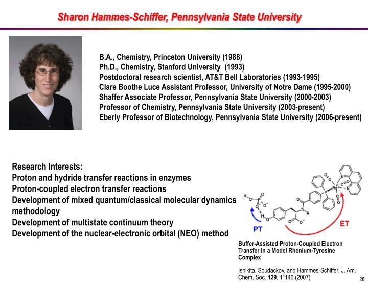 Sharon Hammes-Schiffer, Pennsylvania State University