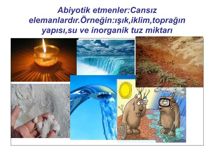 Abiyotik etmenler:Cansz elemanlardr.rnein:k,iklim,topran yaps,su ve inorganik tuz miktar