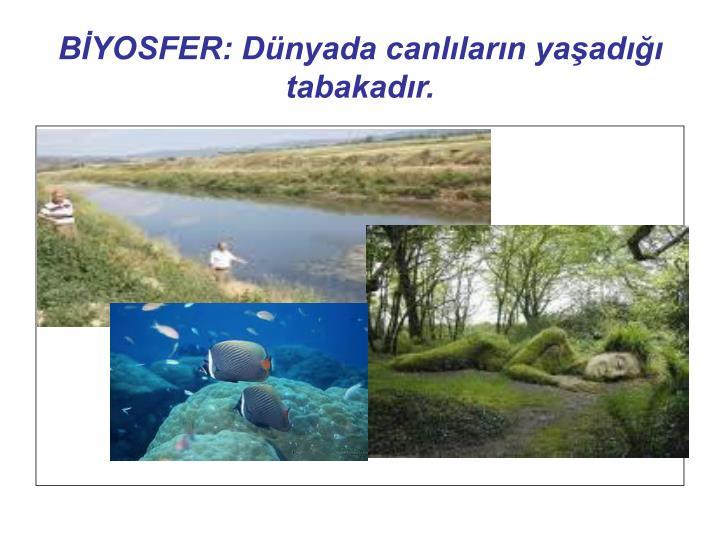 BYOSFER: Dnyada canllarn yaad tabakadr.