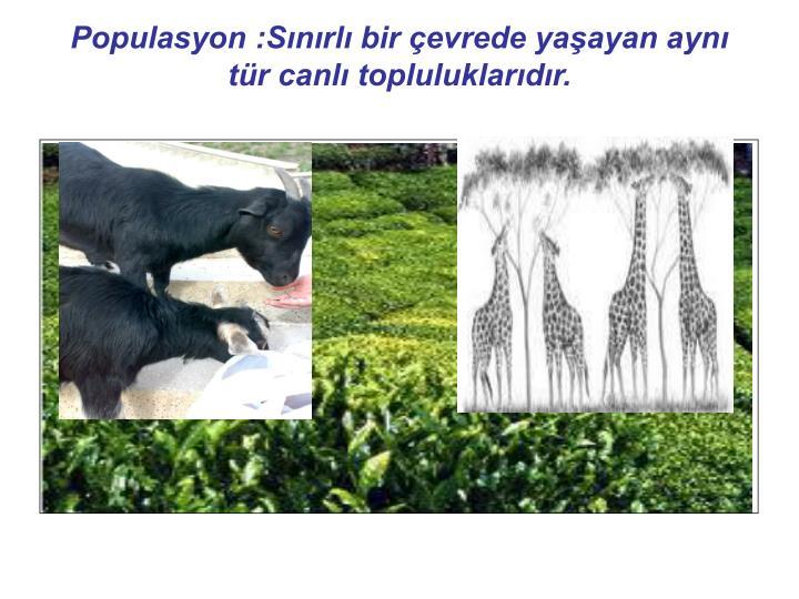 Populasyon :Snrl bir evrede yaayan ayn tr canl topluluklardr.