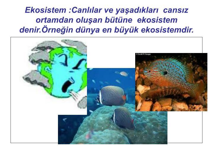 Ekosistem :Canllar ve yaadklar  cansz ortamdan oluan btne  ekosistem denir.rnein dnya en byk ekosistemdir.