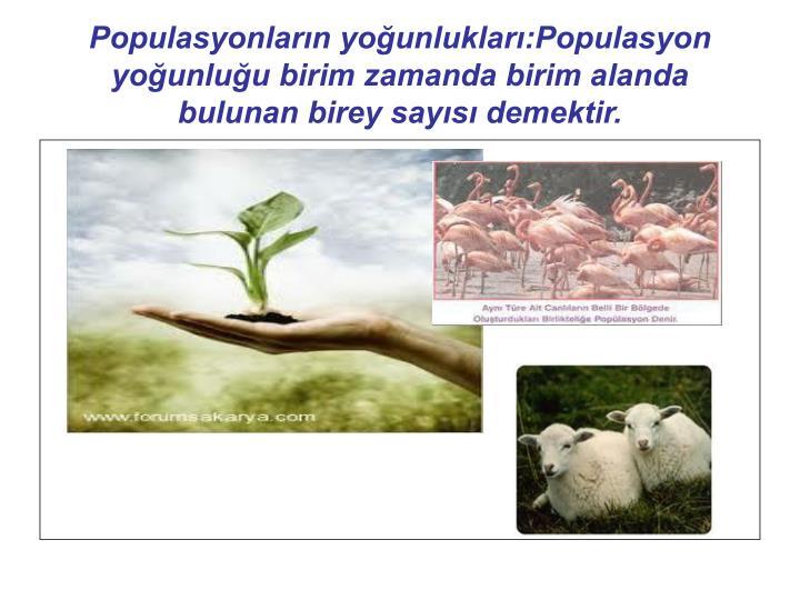 Populasyonlarn younluklar:Populasyon younluu birim zamanda birim alanda bulunan birey says demektir.