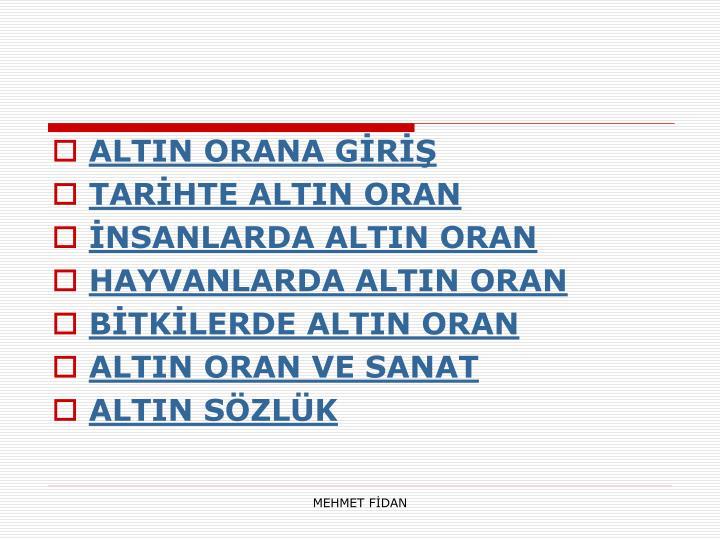 ALTIN ORANA GİRİŞ